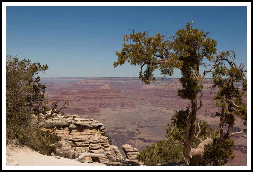 A tiny bit of the Grand Canyon - 2012