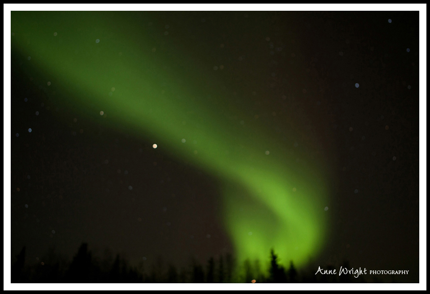 Yellowknife_Winter_Anne_Wright_Photography_16
