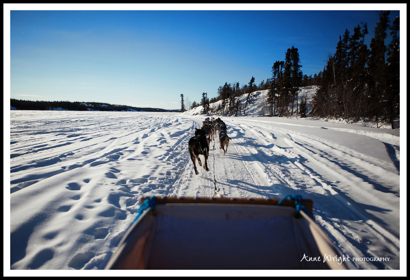 Yellowknife_Winter_Anne_Wright_Photography_20