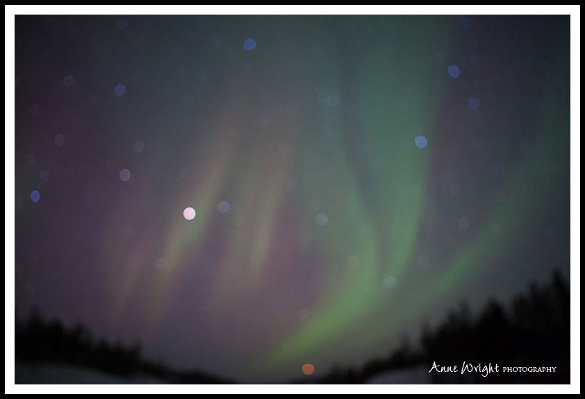 Yellowknife_Winter_Anne_Wright_Photography_27