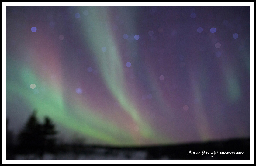 Yellowknife_Winter_Anne_Wright_Photography_28