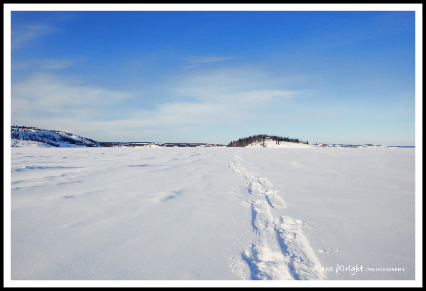Yellowknife_Winter_Anne_Wright_Photography_31