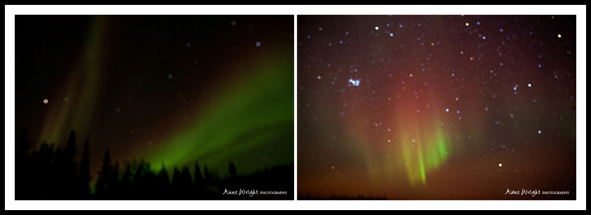 Yellowknife_Winter_Anne_Wright_Photography_40